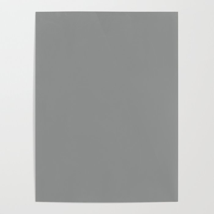Pantone 17-4402 Neutral Gray Poster