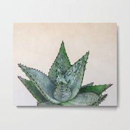 nature VI cactus Metal Print
