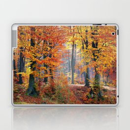 Colorful Autumn Fall Forest Laptop & iPad Skin