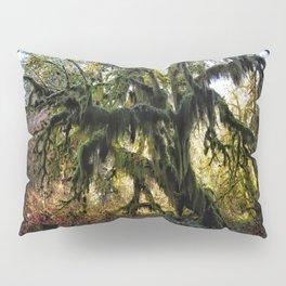 Hoh, Moss Covered Maple Pillow Sham