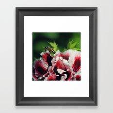 Enjoyed Framed Art Print