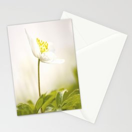 Wood Anemone Blooming in Forest Stationery Cards