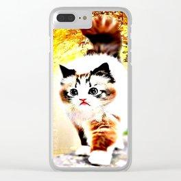Cat Models: Sebastian Clear iPhone Case