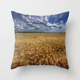 Amber Waves Of Grain Throw Pillow