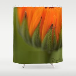 Just Let It Go Shower Curtain