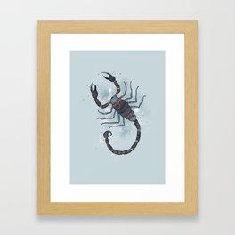 Scorpio Framed Art Print