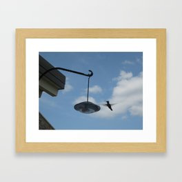 Hummingbird in Flight Framed Art Print