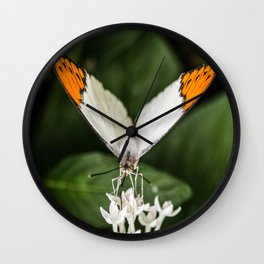 Time is Fleeting Wall Clock