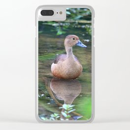 Lesser Whistling Teal Clear iPhone Case