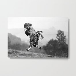 Signs Your Neighbor May Be Spending Too Much Time with his Chickens - black and white photograph Metal Print