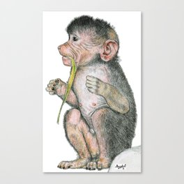 Hungry Little Monkey Canvas Print