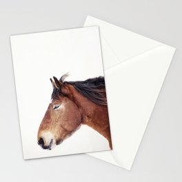 Horse Portrait Stationery Cards