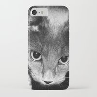 kitten iPhone & iPod Cases featuring kitten by Bunny Noir