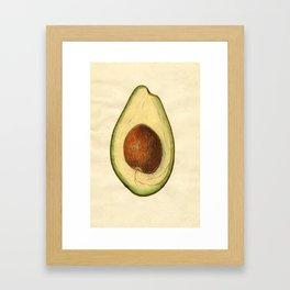Vintage Illustration of an Avocado Framed Art Print