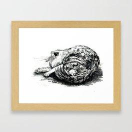 Schlafende Katze.Sleeping cat. Framed Art Print