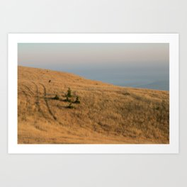 Bolinas Ridge Art Print
