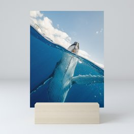 Whales Photography Mini Art Print