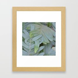 TEXTURES -- Ferns Enfolded Framed Art Print