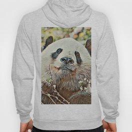 Toony Panda Hoody