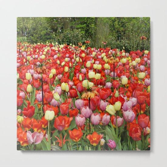Colorful Tulips #2 Metal Print