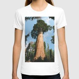 General Sherman Tree T-shirt
