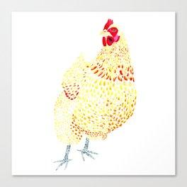 Orpington Chicken Canvas Print