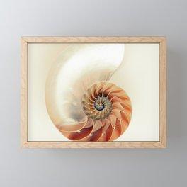 Shell of life Framed Mini Art Print