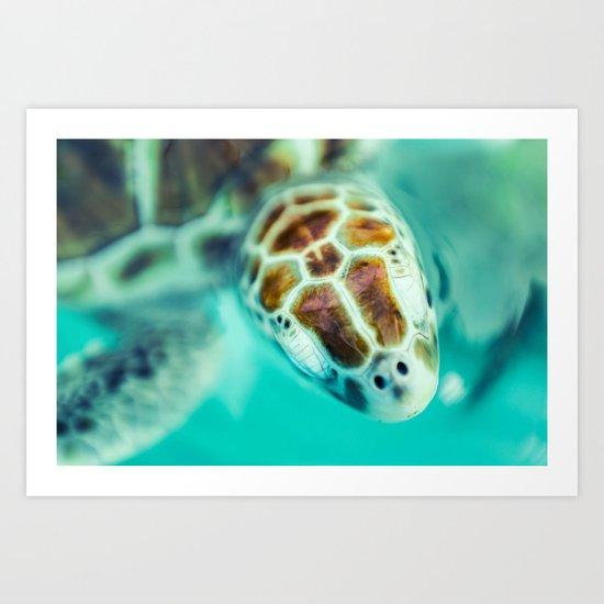Cute Little Sea Turtle Art Print