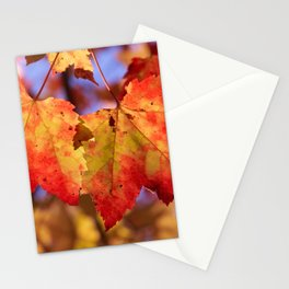 Autumn in Canada - Maple leafs Stationery Cards