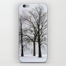 Three Trees in Winter iPhone & iPod Skin