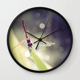 Midsummer Dragonfly - Macro photography Wall Clock