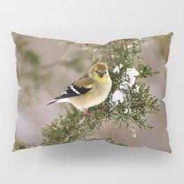 Professor Goldfinch Pillow Sham