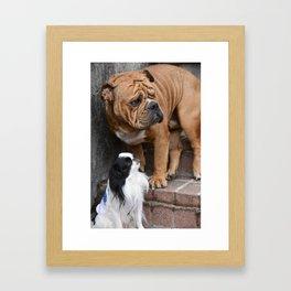 Bulldog & Japanese Chin Framed Art Print
