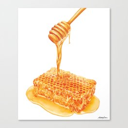 Honey to the Bee Canvas Print