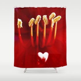 A look into the Real Heart of the Rose Shower Curtain