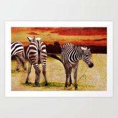 The Zebras Art Print