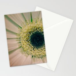 Gerbera Daisy Stationery Cards