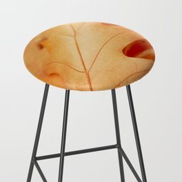 AFE Autumn Leaves, Nature Photography Bar Stool