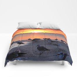 Shore Birds Comforters
