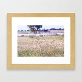 Summer Days Framed Art Print