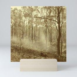 Stunning view of bushfire aftermath Mini Art Print