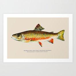 Brook Trout Art Print