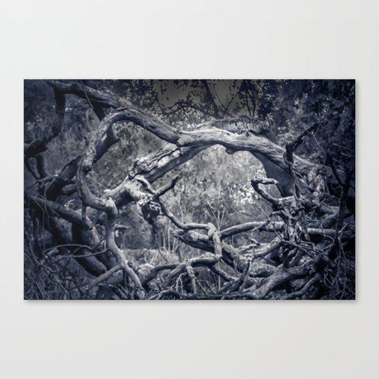 Twisted Window Canvas Print