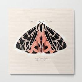 Virgin Tiger Moth Metal Print