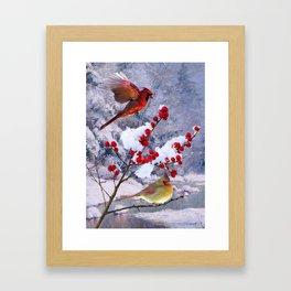 Red Birds of Christmas Framed Art Print