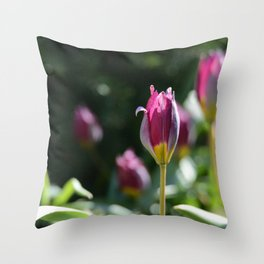 Sprouting Beauty Throw Pillow