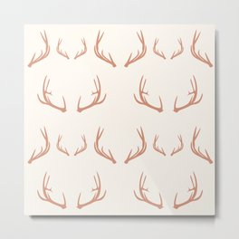 Antlers (Canyon) Metal Print