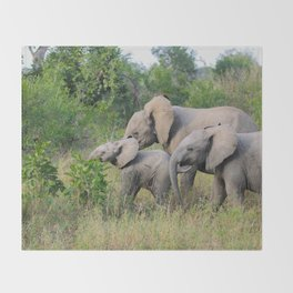 Elephant Family Throw Blanket