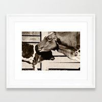 cows Framed Art Prints featuring Cows by Ana Francisconi