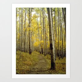 Beaconing Trail of Gold Art Print